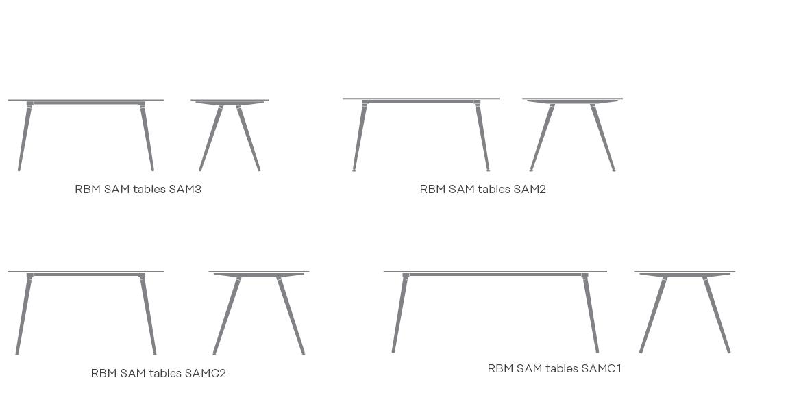 RBM_SAM_table_2